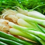 The Difference Between Green Onions and Chives