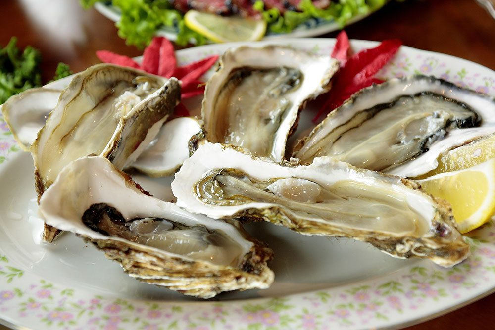 Are Oysters Vegan