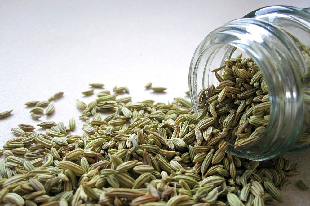 Cook's Handbook Fennel Seed Substitutes to Use as Alternatives