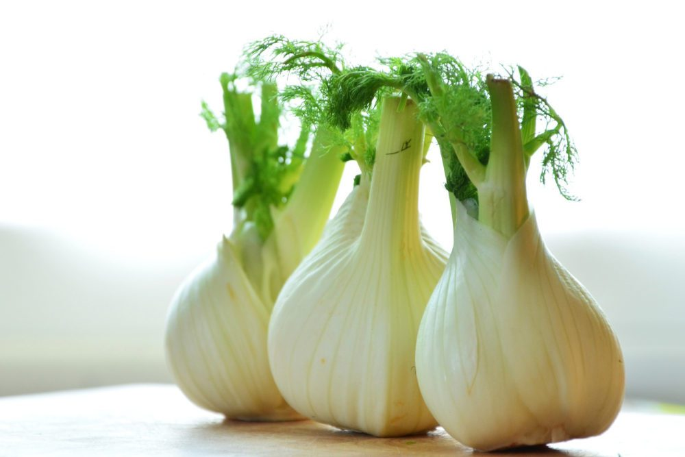 The Ultimate and Absolute Substitutes to Perfectly Replace Fennel